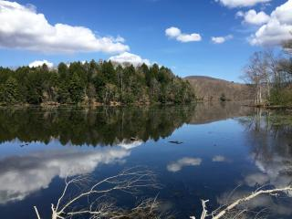 Berkshires Waterfront Lakehouse Sanctuary - Lanesboro vacation rentals