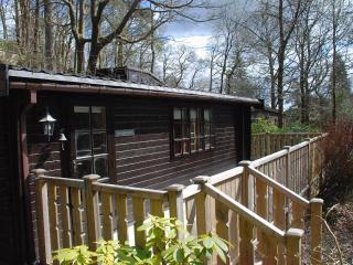 Skelwith Bridge, Ambleside,Self Catering,Log Cabin - Skelwith Bridge vacation rentals