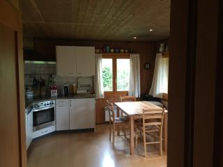 Convenient 2 bedroom Chalet in Salavaux - Salavaux vacation rentals