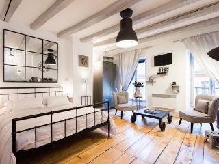 Au Grey d'Annecy - Coeur vieille ville! - Annecy vacation rentals