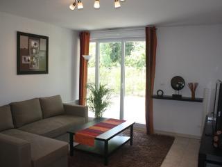 Location vacance avec Jardin à 5min d'Avignon - Montfavet vacation rentals