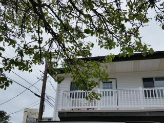 Beautiful One Bedroom Condo 1 block to the Beach - Wildwood vacation rentals