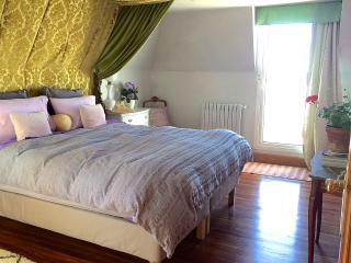 La Concha Villa. 100mts to Beach. 2 car garage - San Sebastian - Donostia vacation rentals