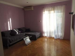 One-Bedroom Apartment with Terrace and Sea View - Brodarica vacation rentals