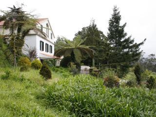 3 bedroom cottage & garden - Santo da Serra vacation rentals