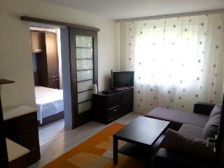 Nice Condo with Internet Access and A/C - Constanta vacation rentals