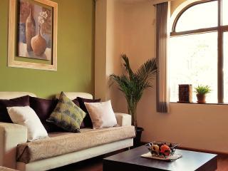 Historic Center Cuenca (Spacious - Cozy  & Quiet) - Cuenca vacation rentals