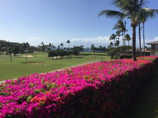 WOW-New 2bd MAUI ELDORADO Ocean & Golf View Corner - Ka'anapali vacation rentals