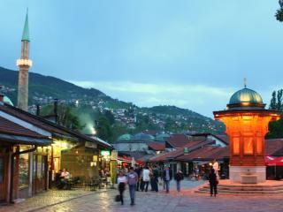 Nice 6 bedroom Guest house in Sarajevo - Sarajevo vacation rentals
