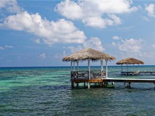 Beautiful 6 bedroom Villa in Grand Cayman - Grand Cayman vacation rentals