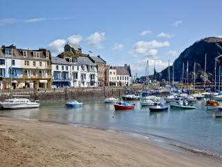 Fishermans Cottage  located in Ilfracombe, Devon - Ilfracombe vacation rentals