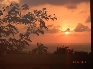 Condo Tranquilo- [NX16] - Tamarindo vacation rentals