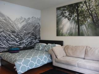 Large 5BR/4BA Home in Perfect Location - Philadelphia vacation rentals