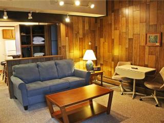 Located at Base of Powderhorn Mtn in the Western Upper Peninsula, A Quiet Trailside Condo with a Shared Hot Tub & Allows Dogs - Bessemer vacation rentals