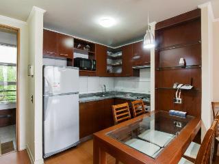 Bright 1 bedroom Vina del Mar Apartment with Internet Access - Vina del Mar vacation rentals