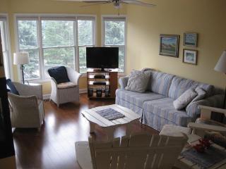 """Beach is Good"" - 3 story Townhouse Sleeps 8 - Walk to Lake Michigan Beach! - Manistee vacation rentals"