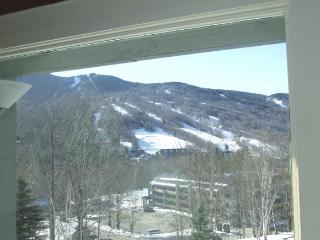 Great views. Great location. Great condo - Lincoln vacation rentals