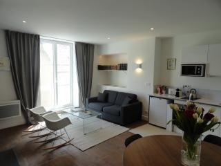 Cozy 1 bedroom Condo in Blois with Kettle - Blois vacation rentals
