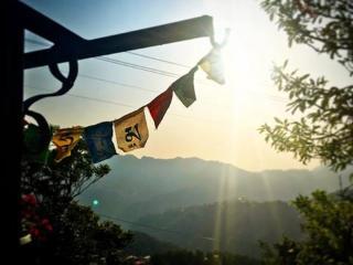 Shimla View Home ,Panthaghati,Shimla,Himachal - Shimla vacation rentals