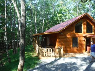 Chalet Log Home In Peaceful Mountain Setting - Murphy vacation rentals