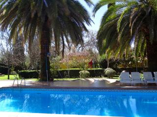 Charming Studio with Internet Access and A/C - Tarija vacation rentals
