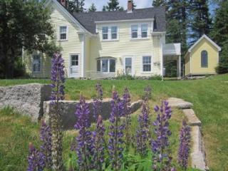 Cozy 3 bedroom House in Stonington - Stonington vacation rentals