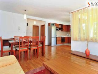 Luxury**** Apartment 11 with Terrace, Kožino-Zadar - Kozino vacation rentals