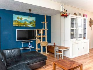 Cozy 3 bedroom Amsterdam House with Television - Amsterdam vacation rentals
