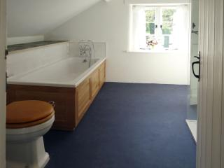 Lopes Cottage, Belstone, Devon - Okehampton vacation rentals