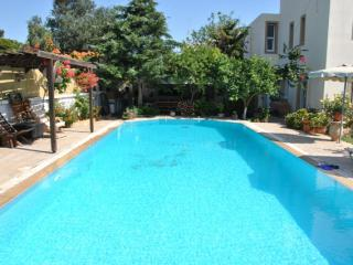 House Village - Stone House With Pool - Kalithies vacation rentals