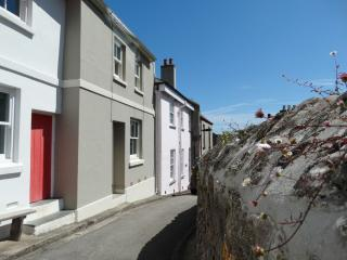 Bright 3 bedroom House in Torpoint with Internet Access - Torpoint vacation rentals