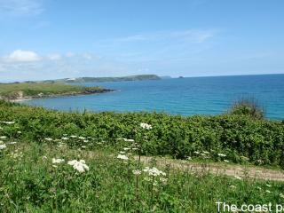 Lovely 2 bedroom House in Portscatho - Portscatho vacation rentals
