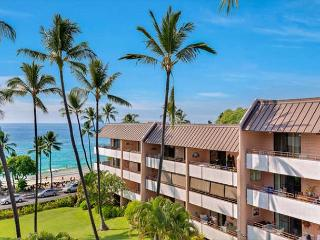 Ocean View- great location! Free Wifi and North America Calling! *SPECIAL* - Kailua-Kona vacation rentals