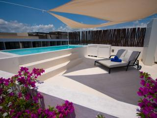 Loft Building PH 301 urban style living! 2 bedroom - Playa del Carmen vacation rentals