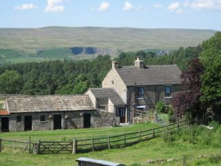 Charming Cottage with Internet Access and Television - Middleton in Teesdale vacation rentals