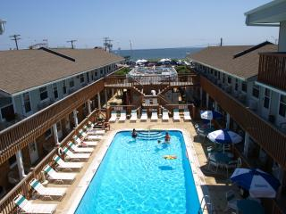 Heated Pool, Beach Just Across the Street - Seaside Park vacation rentals