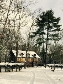 Charming House with Internet Access and Long Term Rentals Allowed - Woodstock vacation rentals