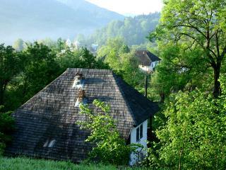 Grandma's house in Nucsoara Village - Corbeni vacation rentals