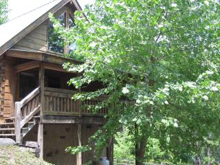 Cozy 1 bedroom House in Gatlinburg - Gatlinburg vacation rentals
