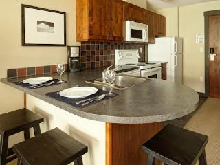 Panorama Upper Village Ski Tip & Tamarack Studio Condo - Panorama vacation rentals