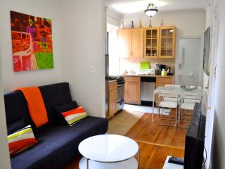 Stylish, Bright, Renovated & Fully Equipped, 2 BDR - New York City vacation rentals