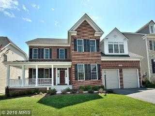 Luxurious New 6 Bedroom Home Located Near DC - Silver Spring vacation rentals