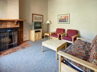 Panorama Lower Village Toby Creek Lodge 2 Bedroom Condo - Panorama vacation rentals