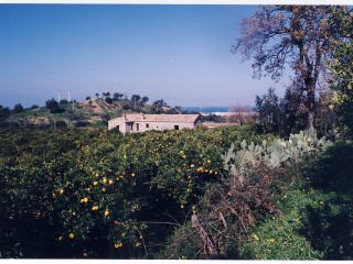 1 bedroom Farmhouse Barn with Parking in Rossano - Rossano vacation rentals
