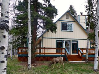 Cozy Mountain Cabin on 5 Beautiful, Wooded Acres - Divide vacation rentals
