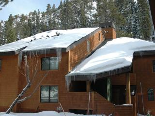 Nice House with Internet Access and Fireplace - Alpine Meadows vacation rentals