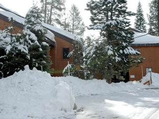 4 bedroom House with Internet Access in Alpine Meadows - Alpine Meadows vacation rentals