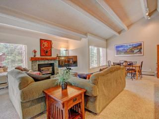 Comfortable Condo with Private Outdoor Pool and Wireless Internet - Breckenridge vacation rentals