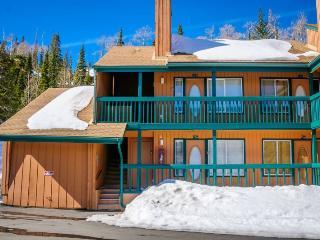 Comfortable 1 bedroom House in Brian Head - Brian Head vacation rentals