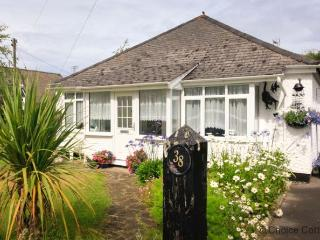 Bright House with Internet Access and Garden - Instow vacation rentals